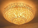 Роскошная потолочная лампа B20-621 для типа гостиницы декоративного