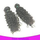 Menschliches lockiges Haar unverarbeitetes Remy Malaysian-Großhandelshaar