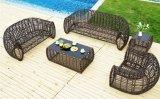 5 قطعة [رتّن] أريكة محدّد حديقة أريكة [ب] [رتّن] أثاث لازم