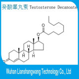 Prüfung Decanoate 99% Bodybuilder-pharmazeutische aufbauendes Steroid CAS-5721-91-5 Reinheit