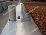 Охлаждая пусковые площадки для оборудования свиньи фермы Piggery подавая