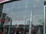 Commercial et résidentiel 5 + 9A + 5mm Rideau Double vitrage en verre de mur