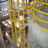 Escada do gato da resistência química FRP/GRP/Fiberglass
