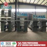Jaula de baterías de la granja de pollo de Argelia para las ponedoras con el refrigerador de la pista (A3L120)