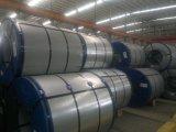 Vorgestrichenes galvanisiertes Stahlblech/Farbe beschichteten Stahlring/Knicke PPGI