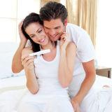 女性HCGの尿の妊娠のストリップ