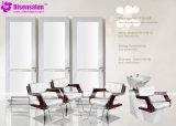 شعبيّة [هيغقوليتي] صالون أثاث لازم مرآة حل صالون كرسي تثبيت ([ب2045])