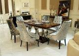 Edelstahl-moderner Speisetisch und Stuhl