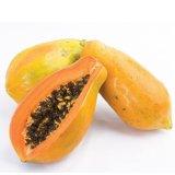 Polvere della spremuta di papaia per sapore dell'alimento e della bevanda