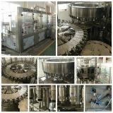 Mineralwasser-Flaschenabfüllmaschine für Plastikflasche 250-2000ml
