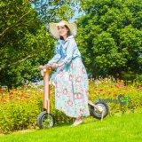 Motocicleta eléctrica del plegamiento más popular 2017 para el adulto