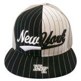 2개의 음색 Bb123에 있는 6개의 위원회 야구 모자