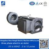 495kw 25-60Hz 3 Phase IC06 Wechselstrom-elektrische Induktions-Motor