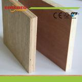 Dos madera contrachapada del abedul de la prensa 18m m de las épocas para el uso de los muebles