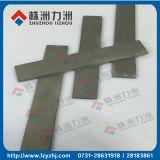 Tiras materiais do carboneto de tungstênio do Virgin para Sharpening da lâmina