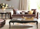 Новая классическая одиночная софа для живущий мебели