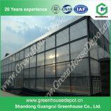 현대 농업 설치를 위한 최신 판매 지적인 유리제 온실