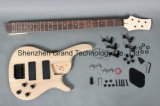 Großartige Musik/Installationssatz des Bolton-Aschen-Karosserien-elektrischer Bass-DIY (35)