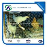 1 '' Quente-Mergulhou engranzamento de fio galvanizado & eletro galvanizado das aves domésticas & engranzamento de fio da galinha do fio de galinha
