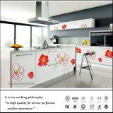 Zh紫外線新しいデザイン食器棚(Fy6619)