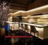 LEIDENE van het restaurant Fastfood Verlichte Tellers van de Staaf