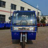 よいSelliing 60V 1000Wの電気乗客の人力車