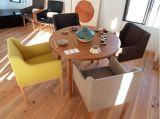 다채로운 대중음식점 직물 의자 (NL-1007)