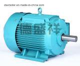 55kw Трехфазный асинхронный электродвигатель переменного тока двигателя