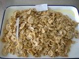 2017 Cultivo de hongos en conserva Catering Tamaño