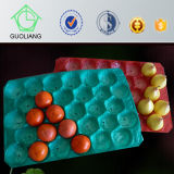 Freie Beispiellebensmittelindustrie, die kundengerechtes Tellersegment des Plastikpp. verpackt