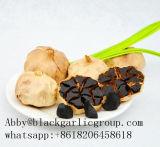 Аппетитный чеснок черноты заквашивания