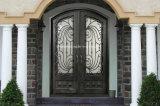 鉄が付いている制作されたアークの上のガラス前ドア