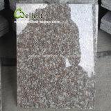 Carrelage bon marché de granit des prix G664 Bainbrook Brown