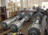 Vertikale versenkte Pumpe (HY)