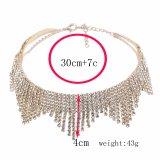 Утрированное высоким качеством окаимленное ожерелье Chocker диаманта
