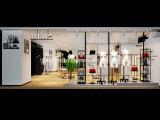 Het Binnenlandse Ontwerp van de Winkel van de kleding voor Dame Clothes Shop