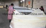 Madera contrachapada blanqueada de la base de la cosechadora de la madera contrachapada del pegamento de la madera contrachapada E1 de la cara del abedul