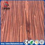 تجاريّة داخليّة وخارجيّة أثاث لازم [غرجن] ميلامين شجرة أوكالبتوس حور خشب رقائقيّ