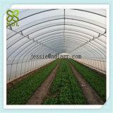 スパンの円形の経済の高いトンネルの温室を育てなさい