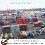 Logística eficiente do corretor do remetente de frete do mar da carga de maioria do recipiente de China a Itajai Brasil