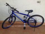 2015 حارّة عمليّة بيع [موونتين بيك/] جبل درّاجة مع 21 سرعة