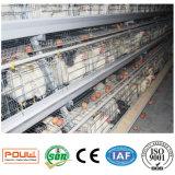 Гальванизированные клетки слоя для птицефермы куриц слоя
