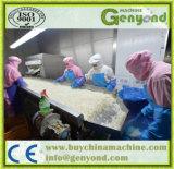 Fábrica de tratamento completa do pó do alho da qualidade superior
