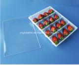 Bandeja de la fruta del animal doméstico/embalaje plásticos de la fruta