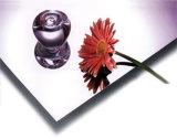 Het Decoratieve blad van uitstekende kwaliteit van de Spiegel van de Badkamers van het Roestvrij staal