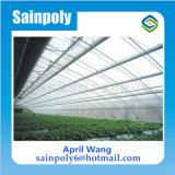 Qualitäts-Solargewächshaus für Kartoffel