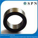 Anelli multipolari del magnete del ferrito magnetico per i motori di CC