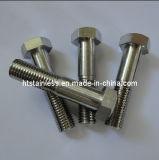 Nickel Alloy Anti Rusty und Hochtemperatur DIN931 Sechskantschraube