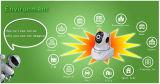 64G 720p P2p Cam PTZ IP Camera van Indoor WiFi Wireless Web voor Home Protection