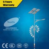 A luz de rua solar do diodo emissor de luz com dobro arma a bateria de lítio de 12V 30ah